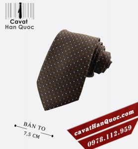 Cà vạt bản to màu nâu chấm bi