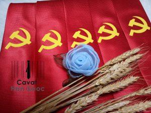 Cà vạt in logo búa liềm Đại hội Đảng