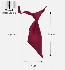 Mặt sau Cà vạt đồng phục Agribank